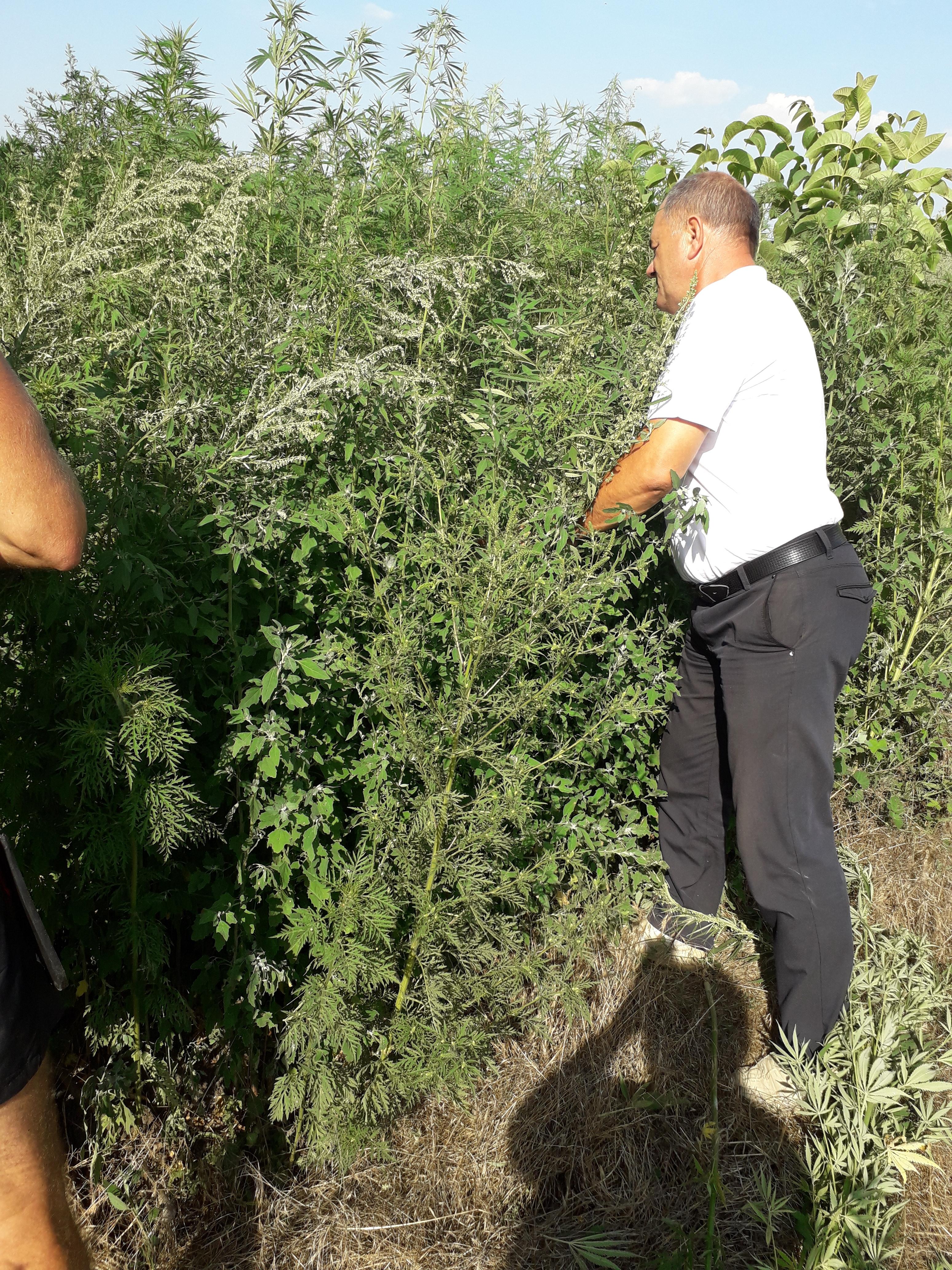 В Ловлинском сельском поселении продолжается работа комиссии