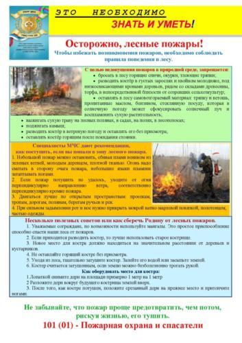 ,  лесной пожар